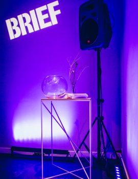 BRIEF 2016
